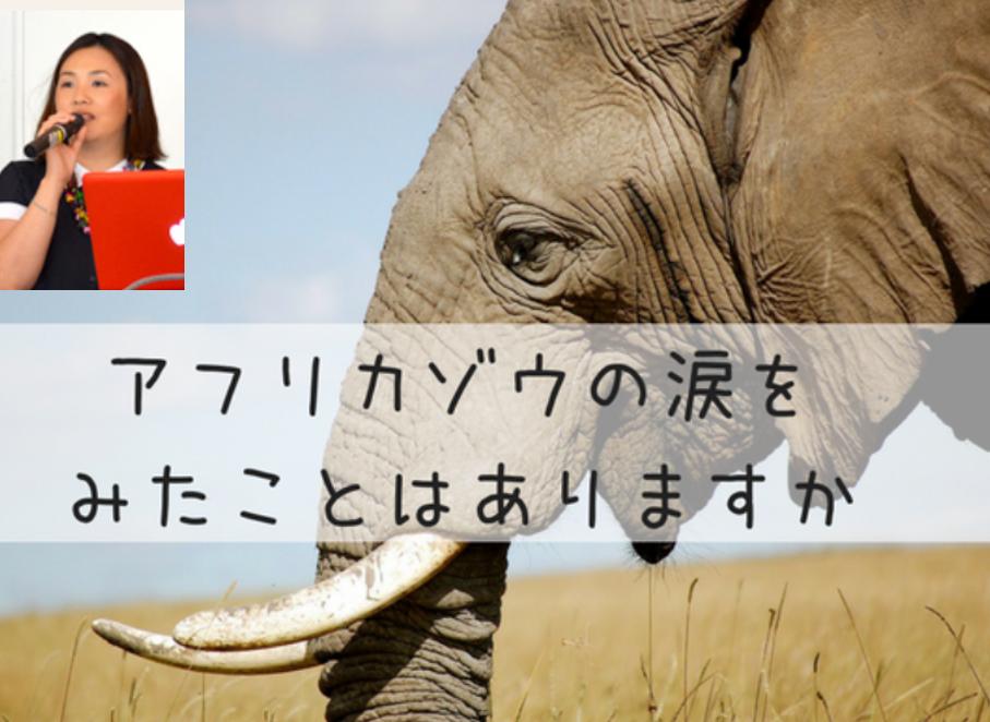 アフリカゾウの涙 山脇愛理 2019年 イベント 情報 経歴 誕生 秘話