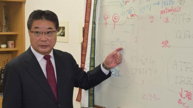 森和俊教授 ノーベル賞 わかりやすく 解説 小胞体ストレス応答とは